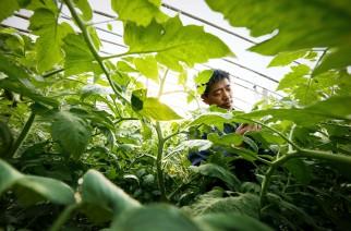 Bayer integra 7ª Jornada Técnica Agrodinâmica
