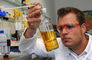 BASF lança fungicida para ajudar cultura do feijão