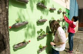"""Bayer traz iniciativa """"Jovens Plantando o Futuro"""""""