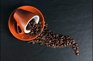 Melitta proporciona degustação de cafés na FLIP 2016, em Paraty