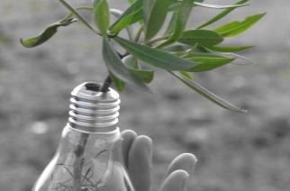 BASF e UNESP juntas em prol da eficiência energética