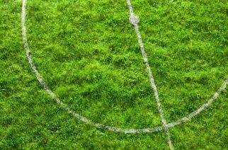 SAP comemora 1 ano de solução voltada ao esporte