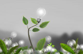 AHK São Paulo forma profissionais na área de gestão de energias