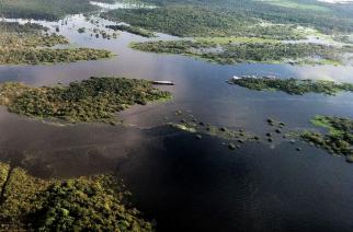 SAP apoia gestão na Amazônia