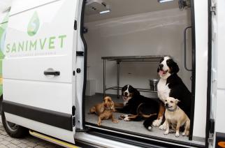 Bayer promove doação de sangue canino