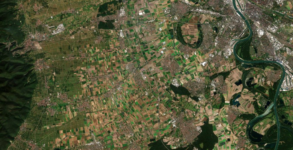 BASF_agriculture_test_site - processed by ESA
