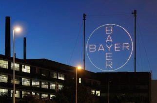 Bayer anuncia novo diretor LatAm Sul na divisão Saúde Animal
