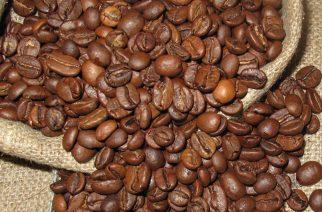 BASF realiza estudo sobre sustentabilidade na produção de café