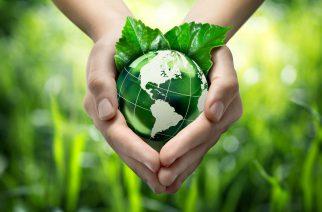 DHL comemora Dia Mundial do Voluntariado plantando 3 mil árvores