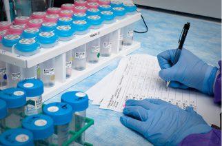 BASF investe 507 milhões de euros em pesquisa