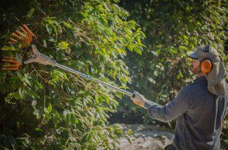 STIHL colabora com ação social do Jardim Botânico