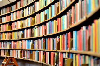Foto: Divulgação Shutterstock