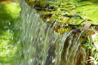 CEBDS e GIZ lançam estudo sobre uso eficiente da água no Brasil