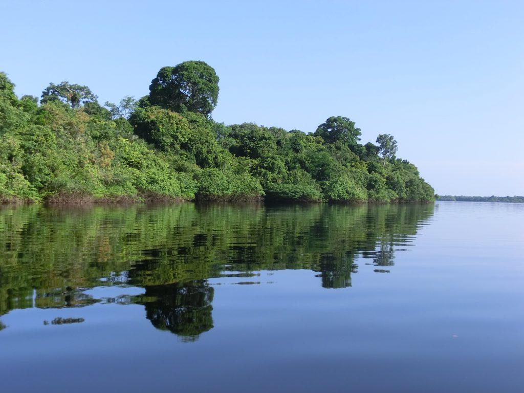 Do PPG7 ao Fundo Amazônia e a Regularização Ambiental