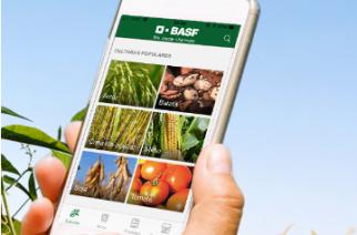 BASF lança aplicativo para o universo Agro