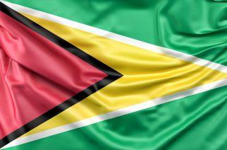 Câmara Brasil-Alemanha promove delegação para a Guiana com foco em mineração e indústria de petróleo e gás