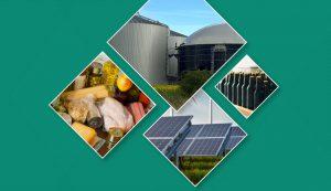Conferência Digital Brasil-Alemanha de Energias Renováveis e Eficiência Energética na Indústria de Alimentos e Bebidas